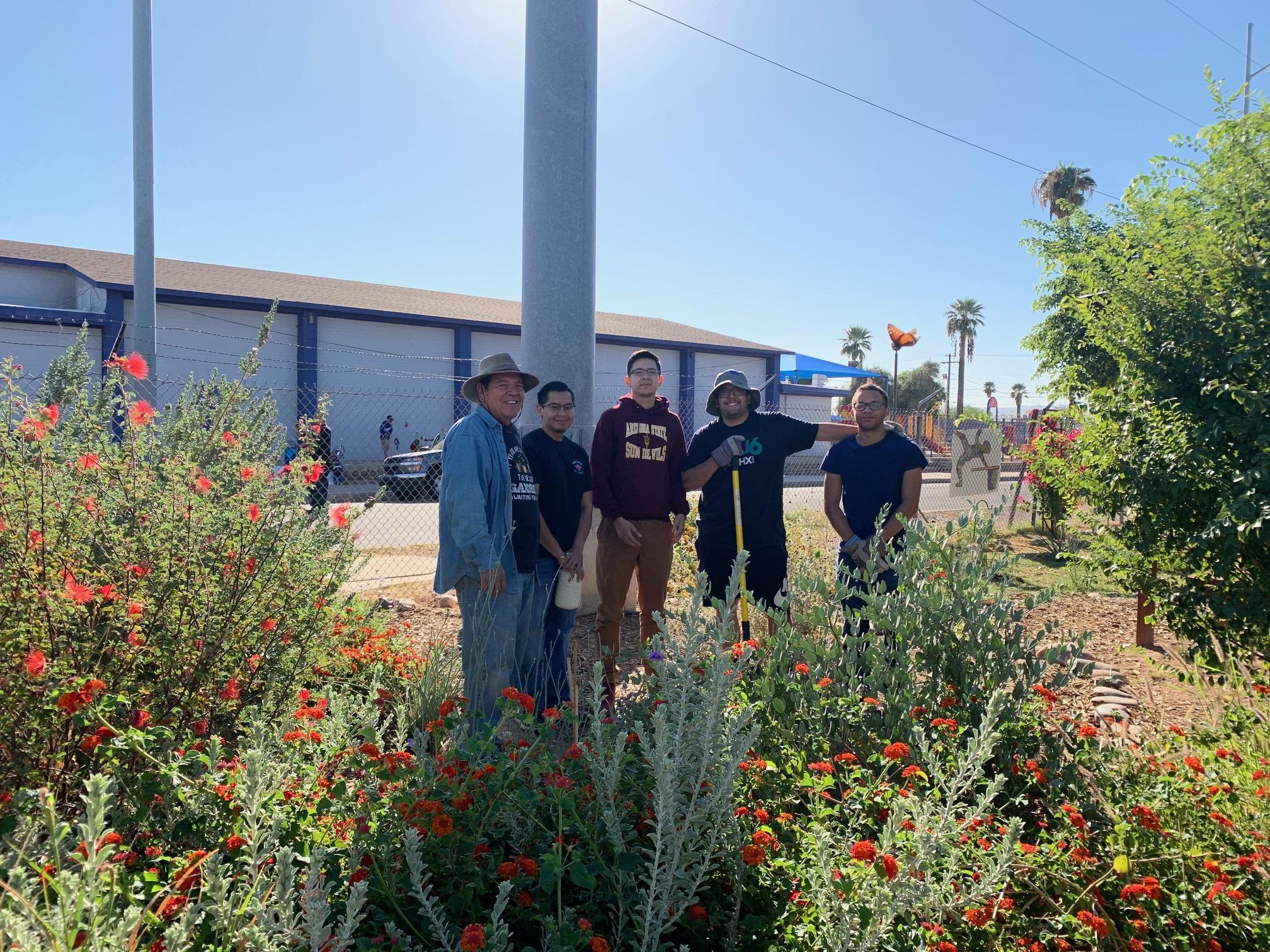 Garden Image Volunteering and Working